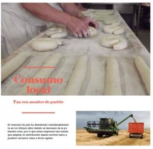 Página del libro Alimentos Locales
